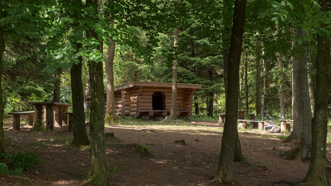 LarsGundersen_Hoverdal-Plantage_ved-Ejstrup-Bæk_shelter_19