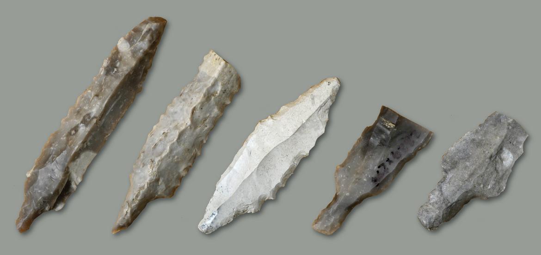 Hvad er to måder at dele fossiler på, og forklare begge du deler mine ex citater