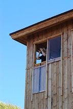 Fugletårnet ved Høstemark Mose