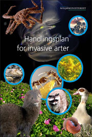 Handlingsplan for invasive arter